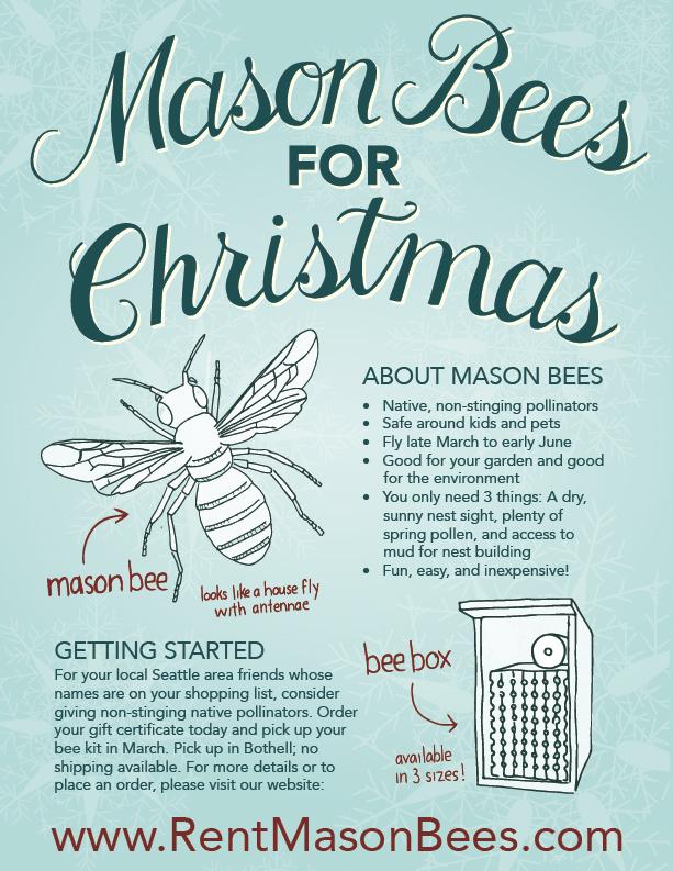 Mason_Bee_Christmas_WEB